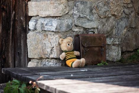 teddy-828498_1280
