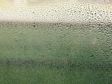 window-736474_1920.jpg